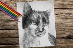 How would you color in those amazing cat eye? Hand drawn in classic grayscale, this coloring page is the perfect way to relax, stay creative and even hone your artistic skill! See more printable coloring pages @ ArtistryByLisaMarie.Etsy.com