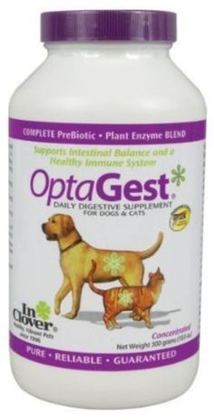 Dog Digestive Supplements