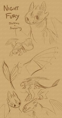 New How To Train Your Dragon Sketches Toothless How To Draw 35 Ideas How To Train Dragon, How To Train Your, Toothless Sketch, How To Draw Toothless, Dragon Anatomy, Night Fury Dragon, Train Drawing, Httyd Dragons, Dreamworks Dragons