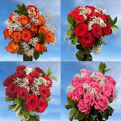 12 Dozen Roses Best Price Red Roses & Assorted Roses with Fillers Dozen Red Roses, Red And Pink Roses, Cut Flowers, Fresh Flowers, Wholesale Roses, Thanks For The Gift, Mothers Day Special, Mothers Day Flowers, Flower Food