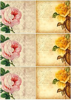Freebie - Vintage Style Flower Cards scrapbooking scrapbook layout Scrapbook Layout Ideas Blankey Blank Scrapping Page. Vintage Diy, Images Vintage, Vintage Labels, Vintage Ephemera, Vintage Pictures, Vintage Cards, Vintage Paper, Vintage Flowers, Vintage Style