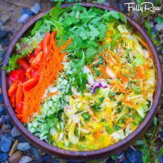 Shredded cabbage slaw, carrots, bok choi, cucumber, purple cabbage, red bells, arugula and mango orange ginger dressing.
