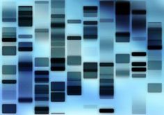 Visual of DNA database