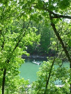 Heather E. - Lake Lanier Island GA