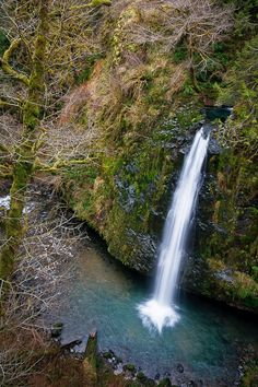 Drift Creek Falls, near Lincoln City, Oregon