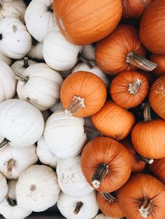 Iphone Wallpaper Herbst, Aesthetic Iphone Wallpaper, Autumn Iphone Wallpaper, Aesthetic Wallpapers, Aesthetic Backgrounds, Wallpaper Desktop, Wallpaper Backgrounds, Cute Fall Wallpaper, Halloween Wallpaper Iphone