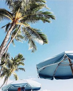 """226 Likes, 5 Comments - FREE PEOPLE HAWAII (@fphawaii) on Instagram: """"Staying here all day // pic: @loree.1 #beachdays #alohastateofmind"""""""