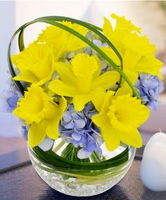 Daffodil arrangement ~ love them mixed with blue flowers, esp. hydrangeas.