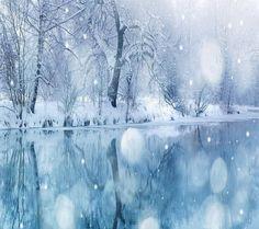 Frozen wonder
