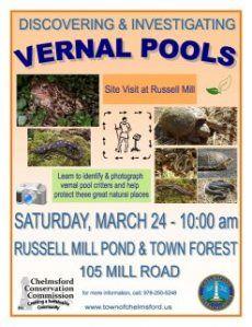 Vernal Pool Flyer