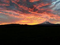Glenwood Washington. Mt. Adams.