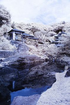 Cool Japan / Japanese garden | Flickr - Photo Sharing! on We Heart It - http://weheartit.com/entry/56624362/via/litwinenko
