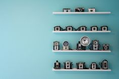 aqua wall, vintage cameras.- Maybe i should put up shelves to display my camera collection.