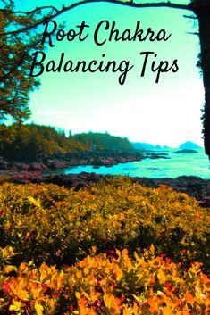 Balancing tips for your wobbly root chakra. When we feel scattered, disorganized, off balance, fearful, doubtful, full of anxiety, lacking abundance, it's time to consider grounding through your root chakra, the first chakra that supports all our other energy centres. It all starts at the roots! Click to read more, and grab my free 'Natural Mind Healing' report and free newsletter! Meditation Crystals, Chakra Meditation, Guided Meditation, Chakras Explained, Centering Prayer, Internal Energy, Root Chakra Healing, Seven Chakras, Mindfulness Activities