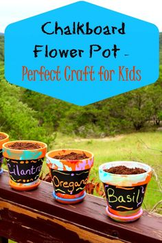 Chalkboard Flower Pots are a simple and fun craft for kids that can also help them learn about gardening.