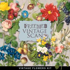 Far Far Hill - Free database of digital illustrations and papers: Freebies Vintage Flowers Vignettes