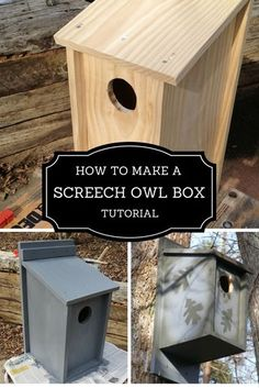 In eight steps, I show you how to make a screech owl box. Bird House Plans, Bird House Kits, Owl House, Owl Nest Box, Owl Box, Building Bird Houses, Bird Houses Diy, Purple Martin House, Birdhouse Designs