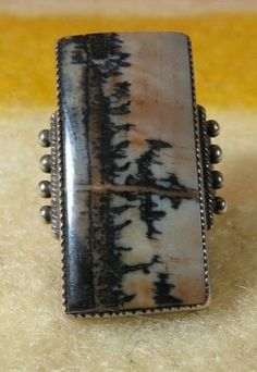 Fred Harvey Era Navajo Petrified Wood/ Picture Agate/ Dendrite Agate ring 6