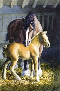 Horse and foal. C. F. Tunnicliffe