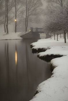 Path Lights II by Ted Anderson on 500px