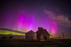 Iowa Auroras