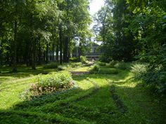 Tchaikovsky's garden with a bed of lilies of the valley