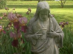 Sacred Heart of Jesus statue among iris,  Dixie's garden, Virginia.