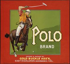 Polo Brand: Grown & packed by Gold Buckle Ass'n., East Highlands, San Bernardino Co., Cal.