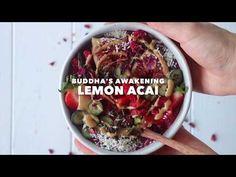 Compre Açaí Liofilizado - Antioxidantes | Iswari ©
