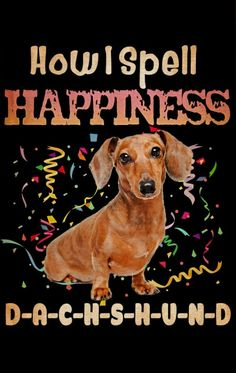Dachshund Quotes, Dachshund Art, Wire Haired Dachshund, Weenie Dogs, Doggies, Dogs And Puppies, Sausage Dogs, Good Morning Images, Sign Quotes