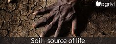 Soil – source of life   Agrivi #AgriviBlog #IYS15 #life #farmer #farming #agriculture