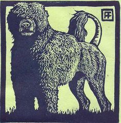 Portuguese Water Dog Linocut. $28.00, via Etsy.