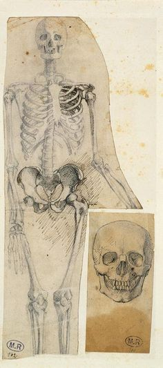 Squelette et crâne (skeleton and skull) c.1856 - Rodin -  Pencil, pen and black ink on paper, cut out and pasted on a support, H. 25.3 cm ; W. 11 cm