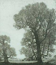 Poplars (Zilverpopulieren), Santpoort - W. O. J. NIEUWENKAMP, etching