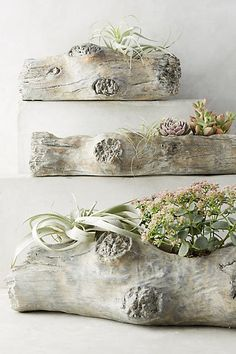 Anthropologie Tree Knots Planter