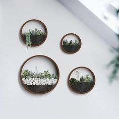 If you have a time frame, please contact me first to find out the delivery time. The package is sent from China and can go up to 3 weeks. THANK YOU! Want something special in your home decoration? Check out these Round Wall Succulent Planter! Check the other colors here -