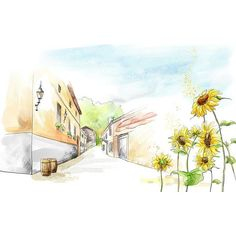 Romantic Summer Sunflowers and the street illustration painting ❤ liked on Polyvore featuring drawings, backgrounds, sketches, art, doodle and scribble