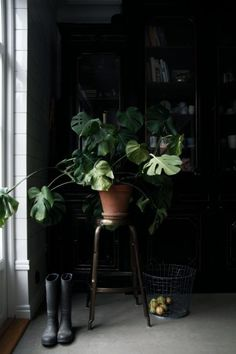 10 Examples of Inspired Spring Greenery