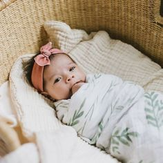 Make her first Baby Pictures extra special with our 100% Organic Stretch Cotton Baby Headbands - Elastic Free & guaranteed to be the comfiest headband your baby will wear. Buy as a single or as a set with Worldwide Shipping available. Preemie to Toddler.