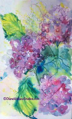 Free flowing #hydrangeas, watercolor