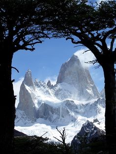Pictures of Patagonia's Los Glaciares National Park and Perito Moreno Glacier hikes, with compact tourist information. Art Nouveau Arquitectura, Chili, Argentine, Tourist Information, Beautiful Landscapes, The Great Outdoors, South America, Landscape Photography, Scenery