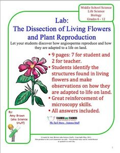 lab set 3 worksheet Pull-outs the following pages are available at the end of the document for easy copying for distribution or posting: safety do's and don'ts for students how should chemicals be stored suggested shelf storage pattern iii  .