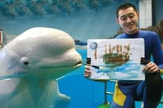 They're very creative… | Why Beluga Whales Should Be Your New Favorite Mammal