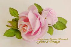 Розовая роза. Запись выступления на конференции 31.03.2015