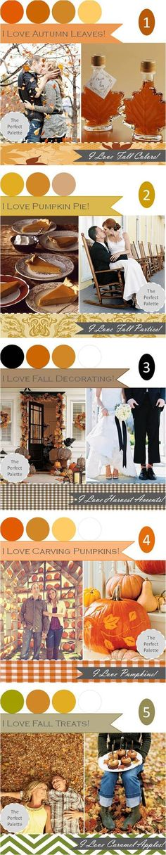 Amazing color palette ideas!! Loving the one w green