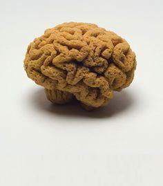 brain sponge - Eponge sculptée by Suzy Lelièvre | photo Veronique Huyghe, ENSCI.