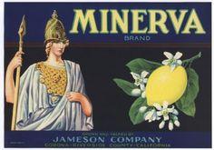 vintage lemon crate label