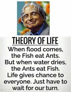 Apj quotes - When Flood comes, the fish eats ants but when water dries, ants eat fish Apj Quotes, Life Quotes Pictures, Real Life Quotes, Reality Quotes, Wisdom Quotes, Qoutes, Fish Quotes, Funny Quotes, Encouragement Quotes