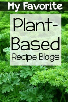 Favorite Plant Based Recipe Blogs.jpg