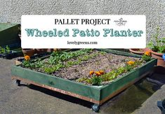 Maximize patio space with a DIY wheeled pallet planter. You can roll it into and out of areas and keep the sun shining on it all day.